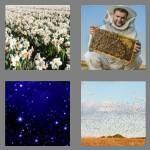 cheats-4-pics-1-word-6-letters-myriad-3702415