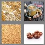 cheats-4-pics-1-word-6-letters-peanut-4686896