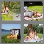 cheats-4-pics-1-word-6-letters-picnic-7415188