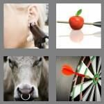 cheats-4-pics-1-word-6-letters-pierce-5965564