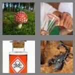 cheats-4-pics-1-word-6-letters-poison-4862541