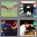 cheats-4-pics-1-word-6-letters-rivals-8604571