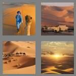 cheats-4-pics-1-word-6-letters-sahara-3956419