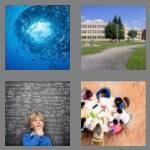 cheats-4-pics-1-word-6-letters-school-3527850