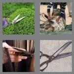 cheats-4-pics-1-word-6-letters-shears-1570461