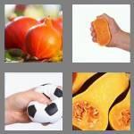 cheats-4-pics-1-word-6-letters-squash-2998119