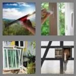 cheats-4-pics-1-word-6-letters-window-2711764