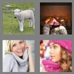 cheats-4-pics-1-word-6-letters-woolly-6471956