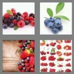 cheats-4-pics-1-word-7-letters-berries-8420789