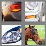 cheats-4-pics-1-word-7-letters-blinker-8928139
