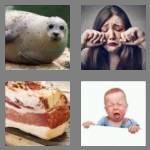 cheats-4-pics-1-word-7-letters-blubber-8817769