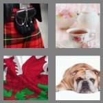 cheats-4-pics-1-word-7-letters-britain-3326929