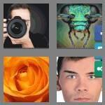 cheats-4-pics-1-word-7-letters-closeup-8183995