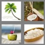 cheats-4-pics-1-word-7-letters-coconut-6368999