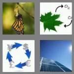 cheats-4-pics-1-word-7-letters-convert-9106299
