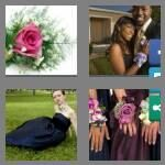 cheats-4-pics-1-word-7-letters-corsage-3717282