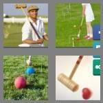 cheats-4-pics-1-word-7-letters-croquet-4174184