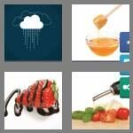 cheats-4-pics-1-word-7-letters-drizzle-9053720