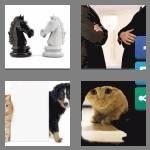 cheats-4-pics-1-word-7-letters-enemies-2295008