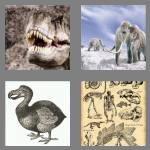 cheats-4-pics-1-word-7-letters-extinct-1721907