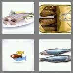 cheats-4-pics-1-word-7-letters-herring-5562871
