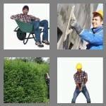 cheats-4-pics-1-word-7-letters-laborer-1050078