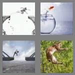 cheats-4-pics-1-word-7-letters-leaping-3809461