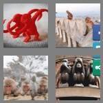 cheats-4-pics-1-word-7-letters-monkeys-7011101
