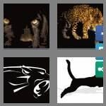 cheats-4-pics-1-word-7-letters-panther-9403911
