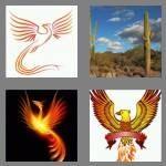 cheats-4-pics-1-word-7-letters-phoenix-6431326