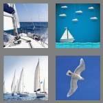 cheats-4-pics-1-word-7-letters-sailing-1684821