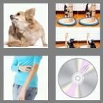 cheats-4-pics-1-word-7-letters-scratch-7556278