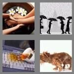 cheats-4-pics-1-word-7-letters-soaking-8255802