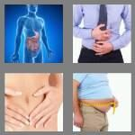 cheats-4-pics-1-word-7-letters-stomach-8698341
