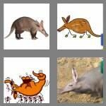 cheats-4-pics-1-word-8-letters-aardvark-3024040