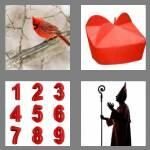 cheats-4-pics-1-word-8-letters-cardinal-9159892