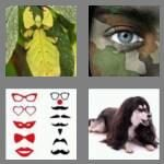 cheats-4-pics-1-word-8-letters-disguise-3262243