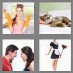 cheats-4-pics-1-word-8-letters-domestic-8095350