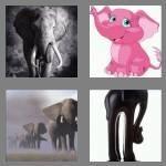 cheats-4-pics-1-word-8-letters-elephant-3450136
