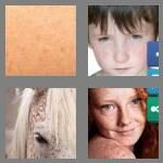 cheats-4-pics-1-word-8-letters-freckles-5143253