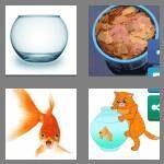 cheats-4-pics-1-word-8-letters-goldfish-9188159