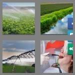 cheats-4-pics-1-word-8-letters-irrigate-1621048