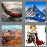 cheats-4-pics-1-word-8-letters-majestic-5500205