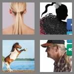 cheats-4-pics-1-word-8-letters-ponytail-4927381
