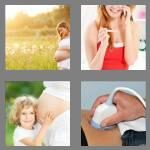 cheats-4-pics-1-word-8-letters-pregnant-6588810