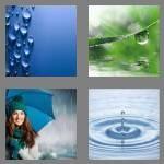 cheats-4-pics-1-word-8-letters-raindrop-7124343
