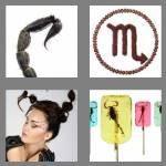 cheats-4-pics-1-word-8-letters-scorpion-3279374