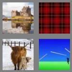 cheats-4-pics-1-word-8-letters-scottish-6725443
