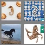 cheats-4-pics-1-word-8-letters-seahorse-2196576