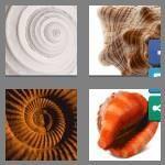 cheats-4-pics-1-word-8-letters-seashell-2154344